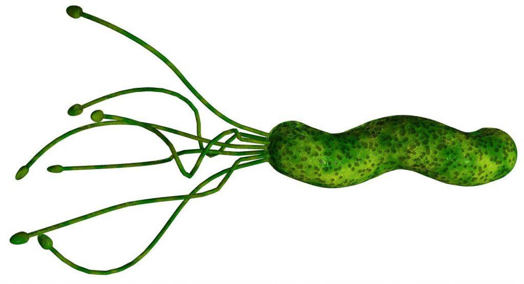 Ещё тридцать лет назад никто не верил в существование Helicobacter pylori. Тем не менее вот она, открытая Барри Маршаллом путём эксперимента, поставленного на себе самом.
