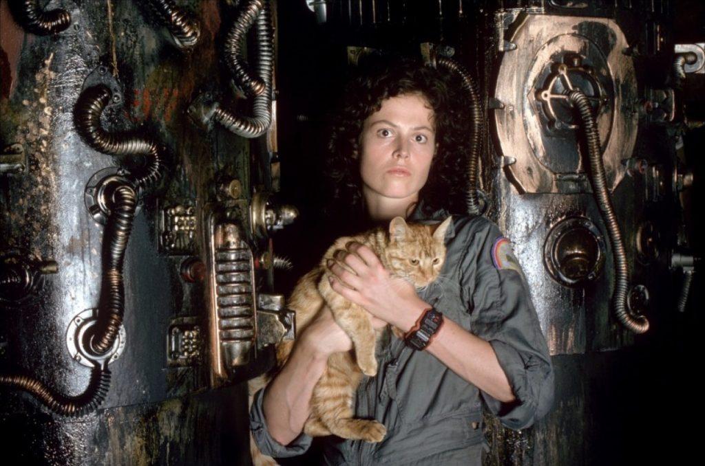 В отличие от Рипли, кот был в сценарии с самого начала.