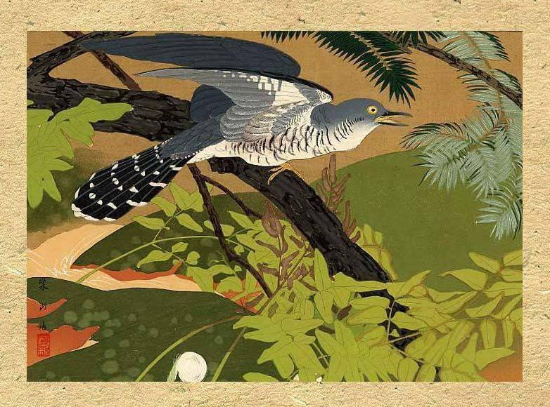 bird[1]