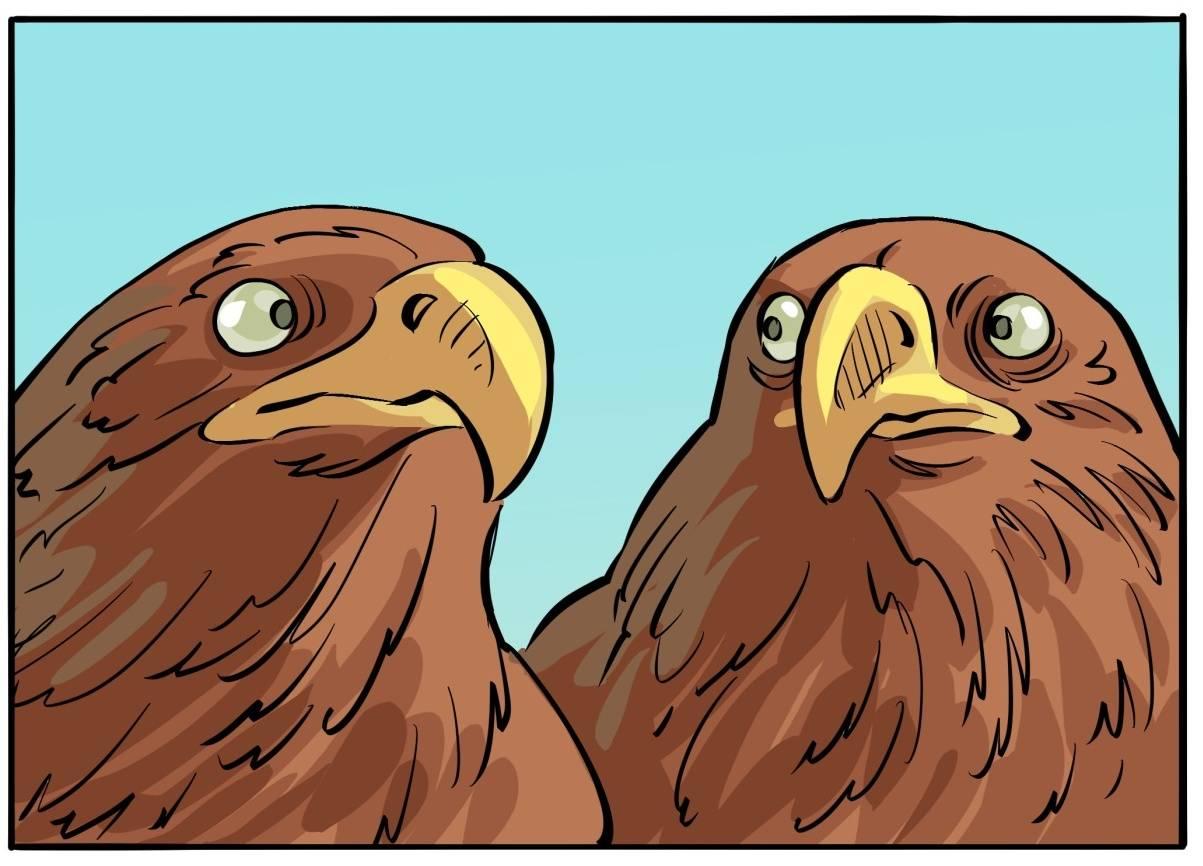 Комикс: Летайте орлами Средиземья!