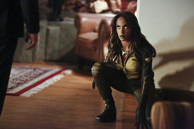 Arrow-Season-4-Vixen[1]