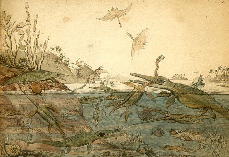 Ископаемые кости долгое время считались останками погибших во время потопа исполинов. Ведь о других вымерших видах Библия не упоминала
