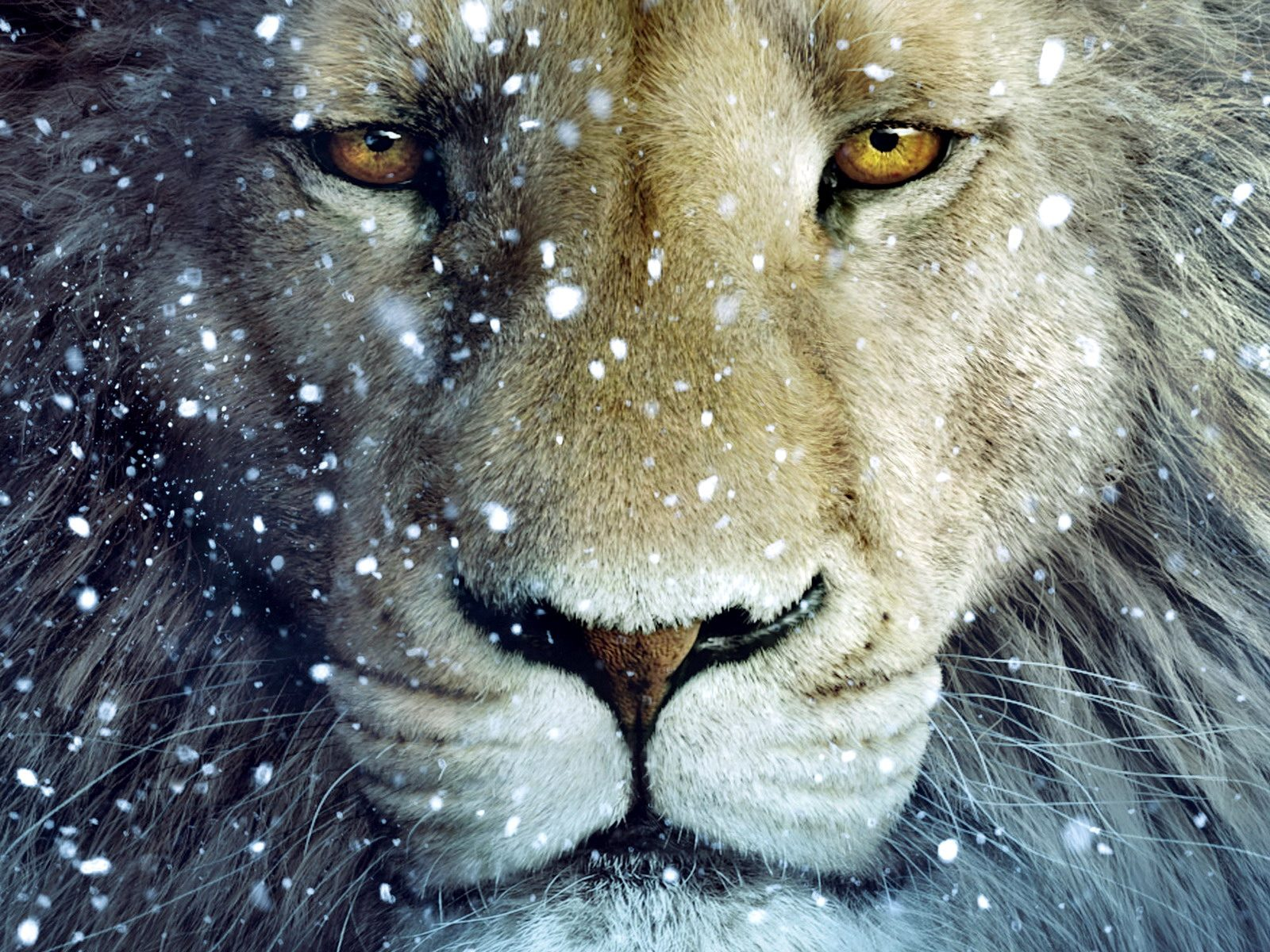 aslan-lion-the-chronicles-of-narnia[1]