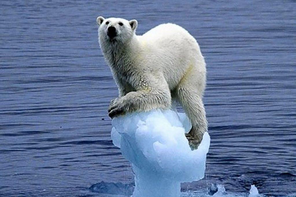 Первые пострадавшие от глобального потепления