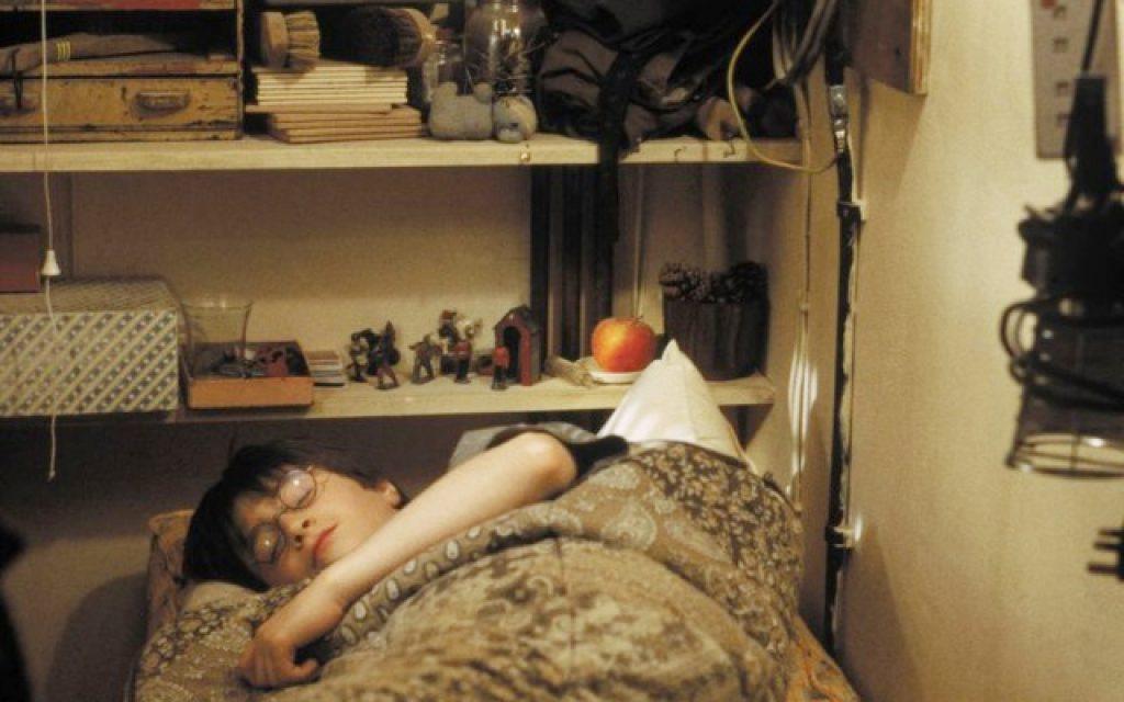 Лучшие фанатские теории о «Гарри Поттере» 12