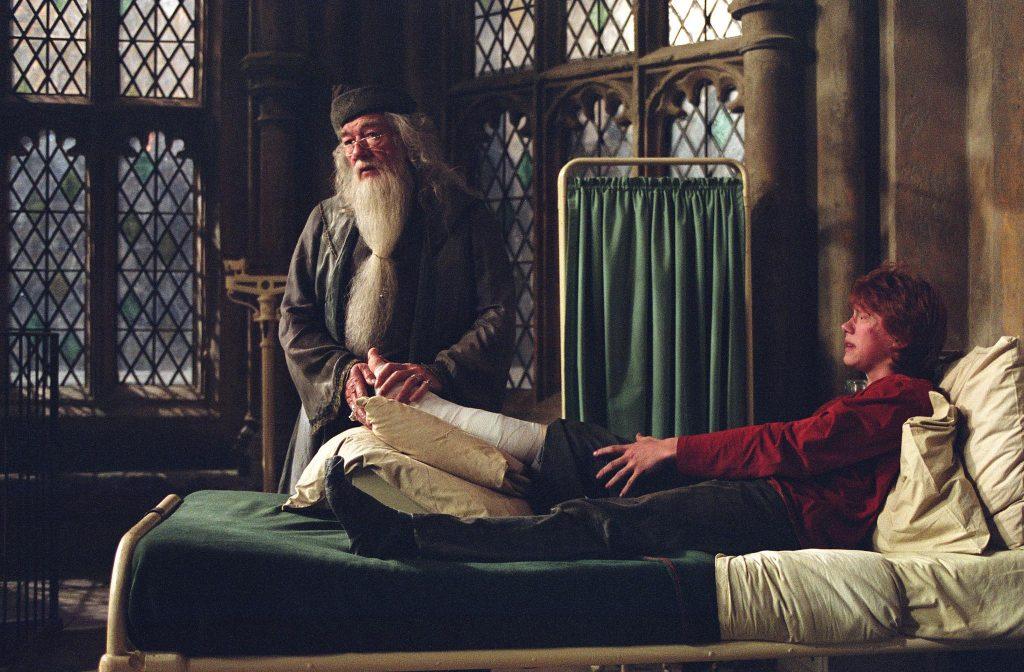 Лучшие фанатские теории о «Гарри Поттере» 3
