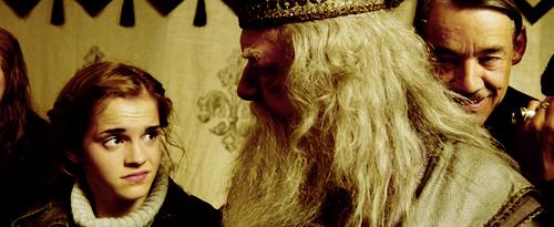 Лучшие фанатские теории о «Гарри Поттере» 13