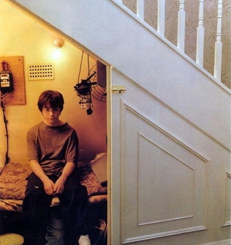 Лучшие фанатские теории о «Гарри Поттере» 5