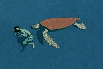 «Красная черепаха» — безумно красивый мультфильм от Ghibli 4