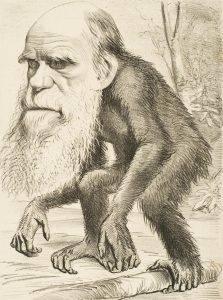 Дарвин карикатура