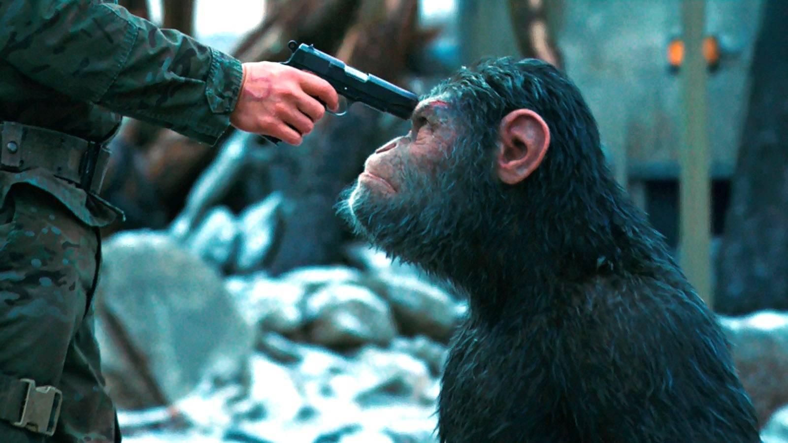 «Планета обезьян: Война» — лучший «Варкрафт», чем сам «Варкрафт» 2