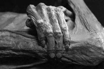 Удивительные мумии нового времени иих приключения