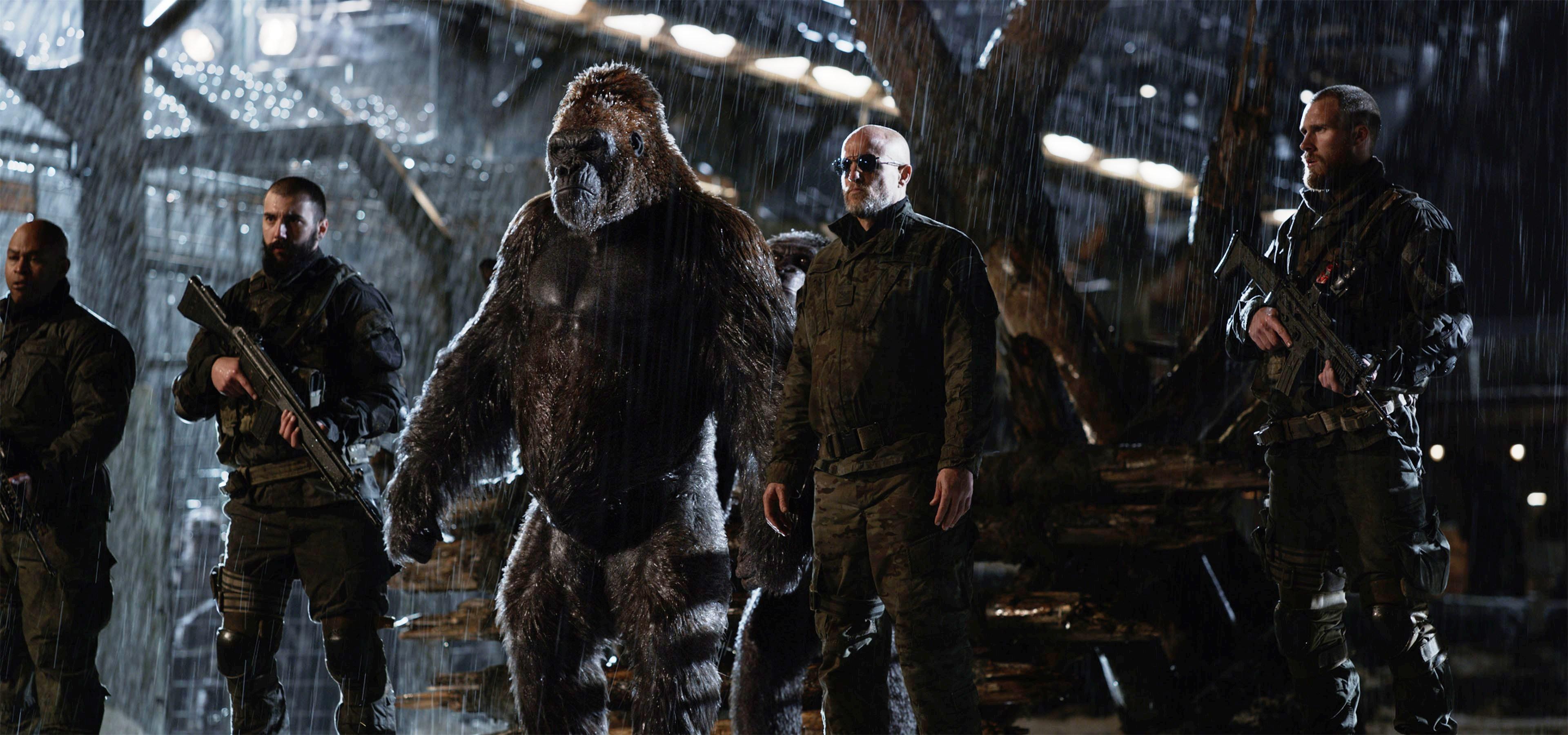 «Планета обезьян: Война» — лучший «Варкрафт», чем сам «Варкрафт» 5