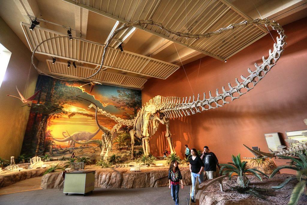 Если бы динозавры не вымерли 28