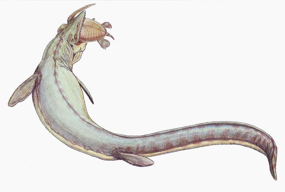 Если бы динозавры не вымерли 8