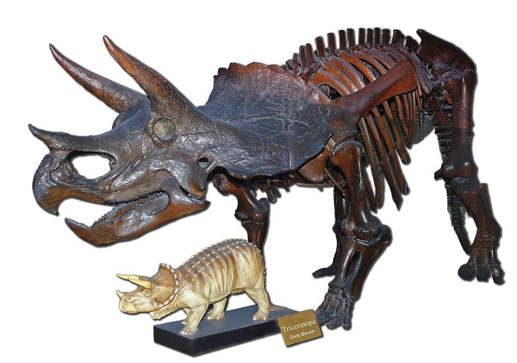 Если бы динозавры не вымерли 21
