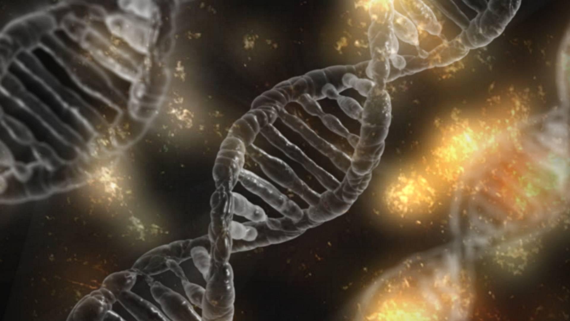 «Нейробиология — главная наука XXI века»: беседа с научным журналистом Асей Казанцевой 4