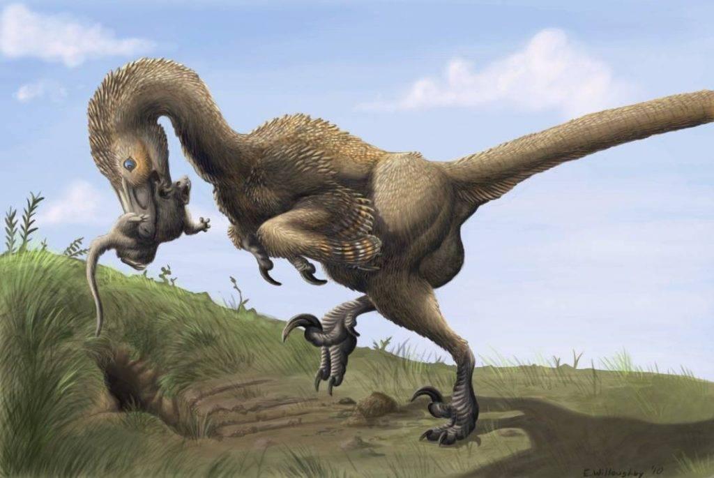 Почему вымерли динозавры? 9