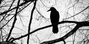 Осенняя безысходность: 10 очень мрачных книг 7