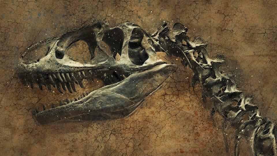 Почему вымерли динозавры? 14