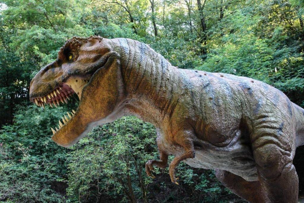 Почему вымерли динозавры? 15
