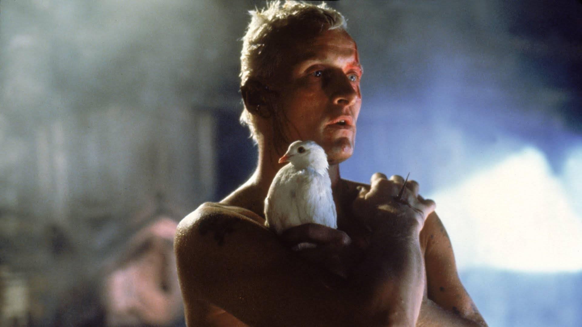 «Бегущий по лезвию»: история великого фильма, который никто не понял 8
