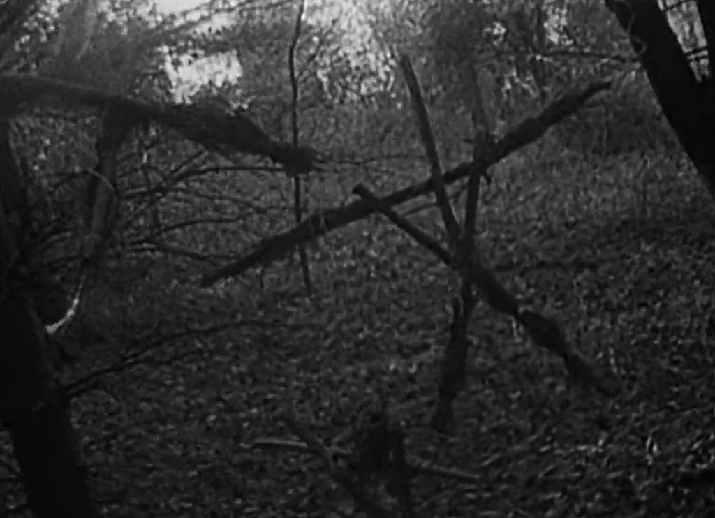 Сцены из кино, которые напугали нас по-настоящему 5
