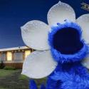 Видео: «Улица Сезам» спародировала «Очень странные дела»