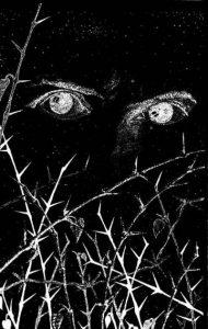 Север Гансовский и его фантастика 8