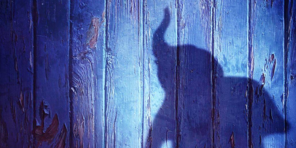 Вышел первый тизер фильма «Дамбо» от Тима Бёртона