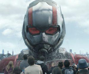 «Человек-муравей и Оса»: разрядка смехом после «Мстителей»