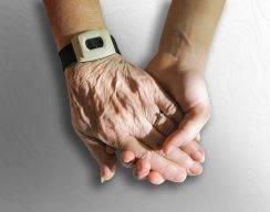 Пути бессмертных. Можно ли победить старение?