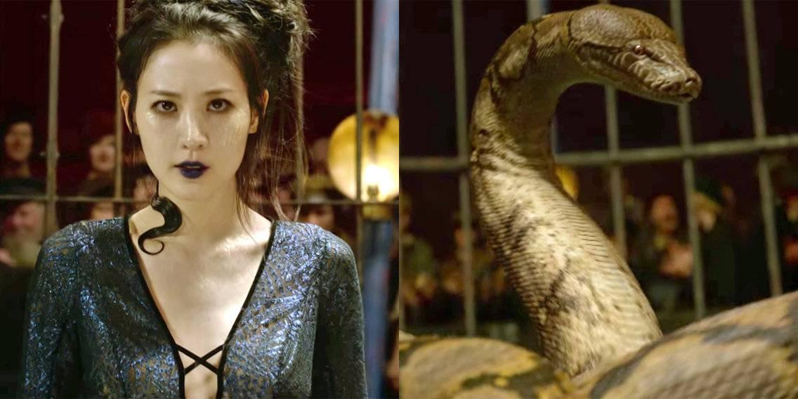 Аурелиус Дамблдор, маледикт, Макгонагалл: как «Преступления Грин-де-Вальда» ломают канон «Гарри Поттера» 3