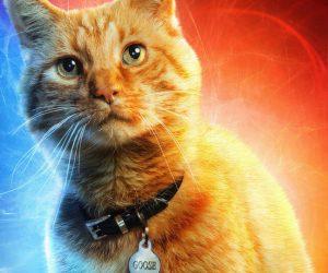 Первым зрителям «Капитан Марвел» больше всего понравился кот. В комиксах он был жутким чудовищем