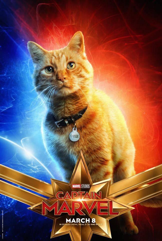 Первым зрителям «Капитан Марвел» больше всего понравился кот. В комиксах он был жутким чудовищем 3