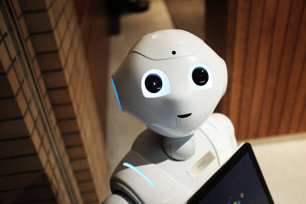 Нужен ли роботу гендер? Гиноиды с Венеры, андроиды с Марса 11