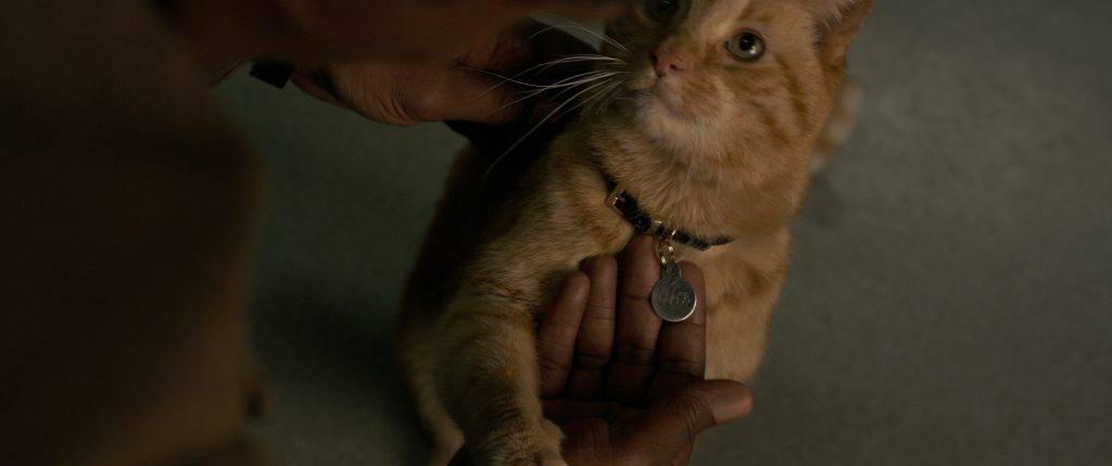 «Капитан Марвел» — фильм о слишком сильной героине 3
