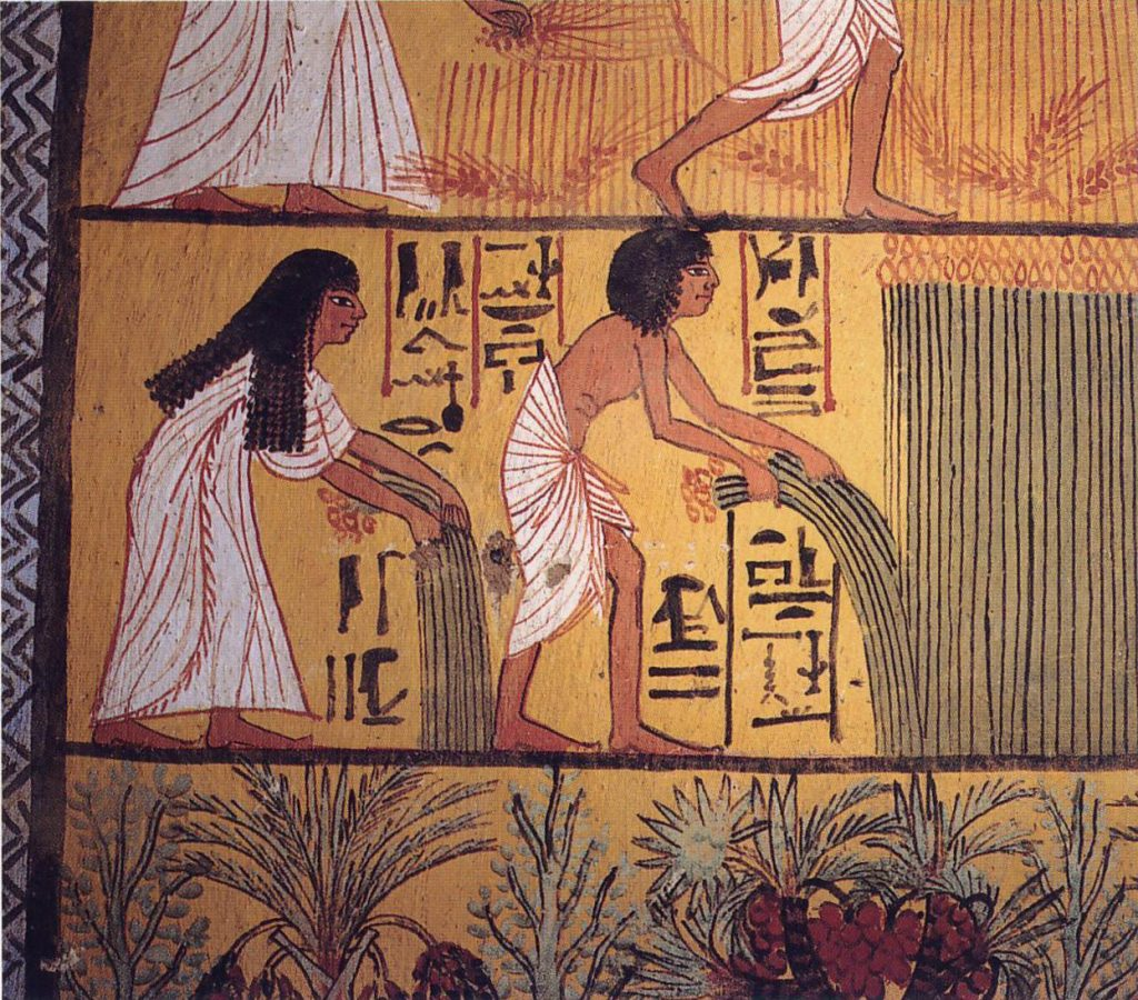 Кухня попаданца: что ели в Древнем Египте 7