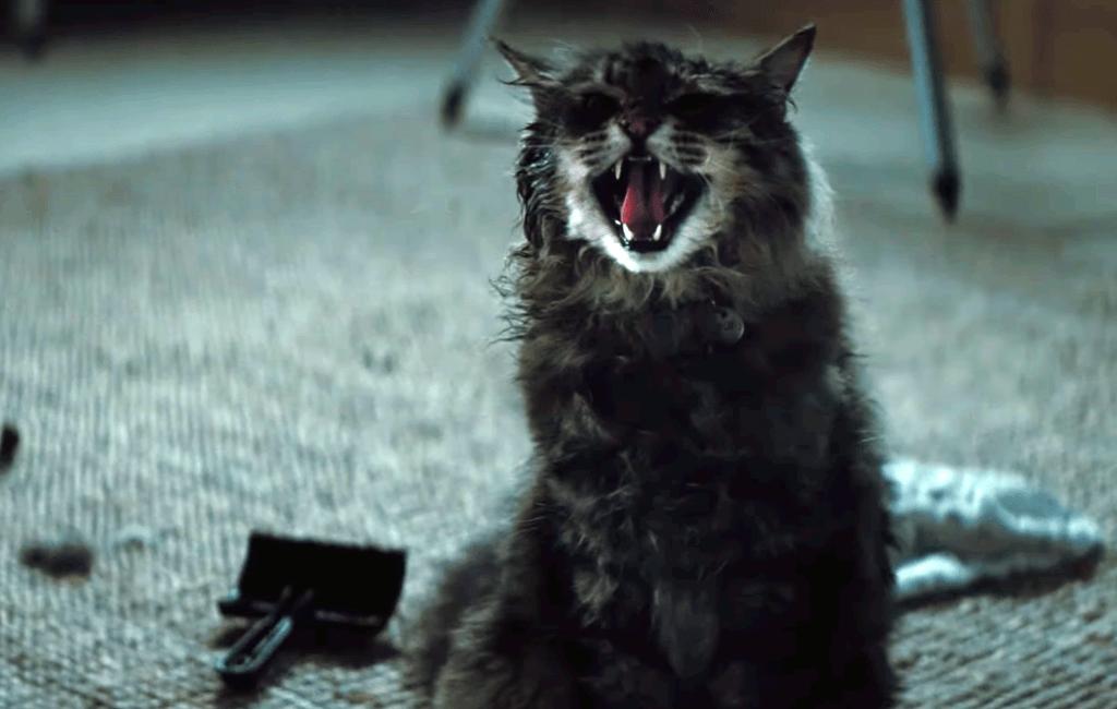 «Кладбище домашних животных»: чем фильм отличается от книги