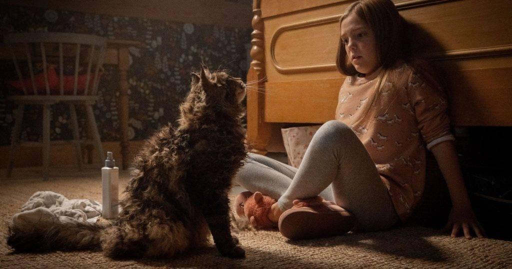 «Кладбище домашних животных»: чем фильм отличается от книги 8