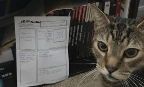 Фан: ветеринар создал больному коту персонажа по D&D