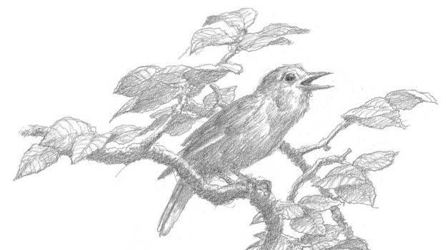 Что почитать: «Берен и Лутиэн» с иллюстрациями Алана Ли и 3