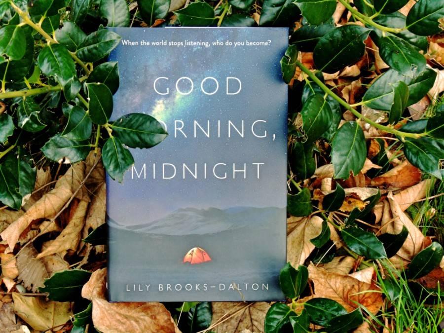 Мнение о сценарии «Доброе утро, полночь» (Good morning, midnight) 3
