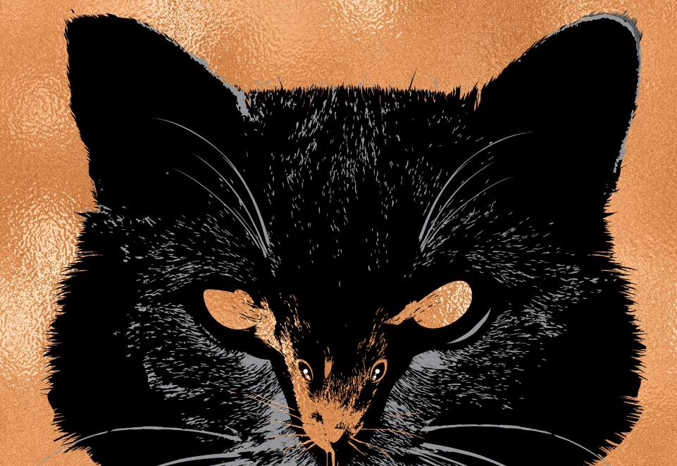 Стивен Кинг объявил о выходе следующей книги — это сборник четырёх повестей