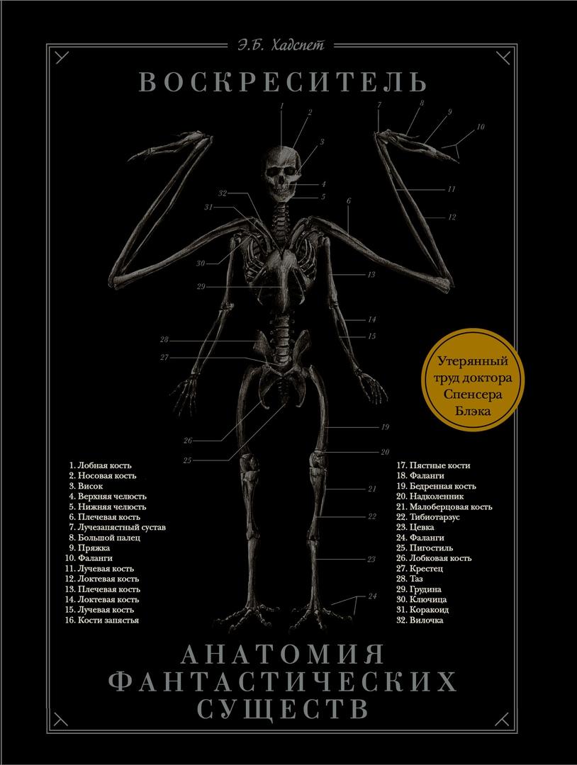 Что почитать: альтистория по нацистов с интернетом, анатомия монстров и переиздания «Ведьмака» 1