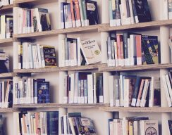 Писатели, переводчики и блогеры советуют лучшие книги 2019 года