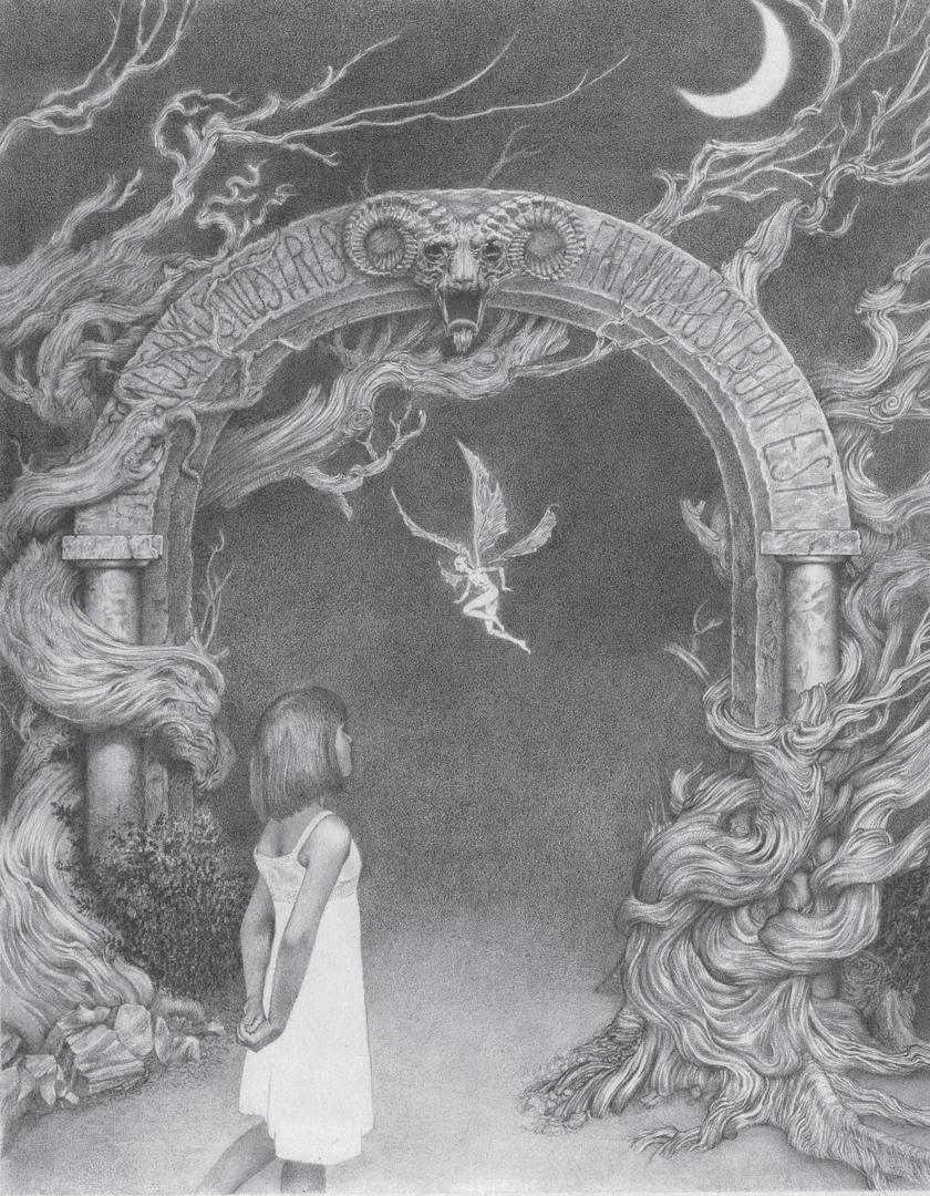 Что почитать: омнибус «Двурождённых», истории мира «Лабиринта Фавна» и новый польский автор 7