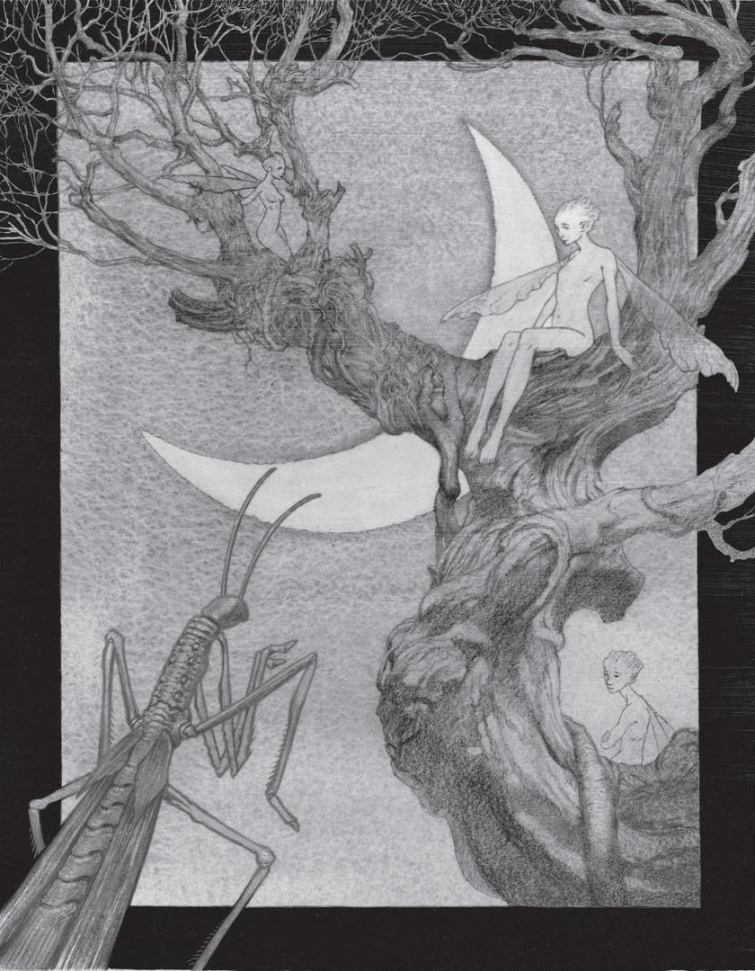 Что почитать: омнибус «Двурождённых», истории мира «Лабиринта Фавна» и новый польский автор 5