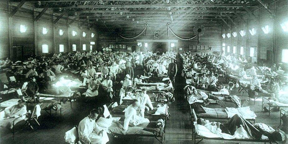 До коронавируса: смертоносные эпидемии, изменившие мир 6