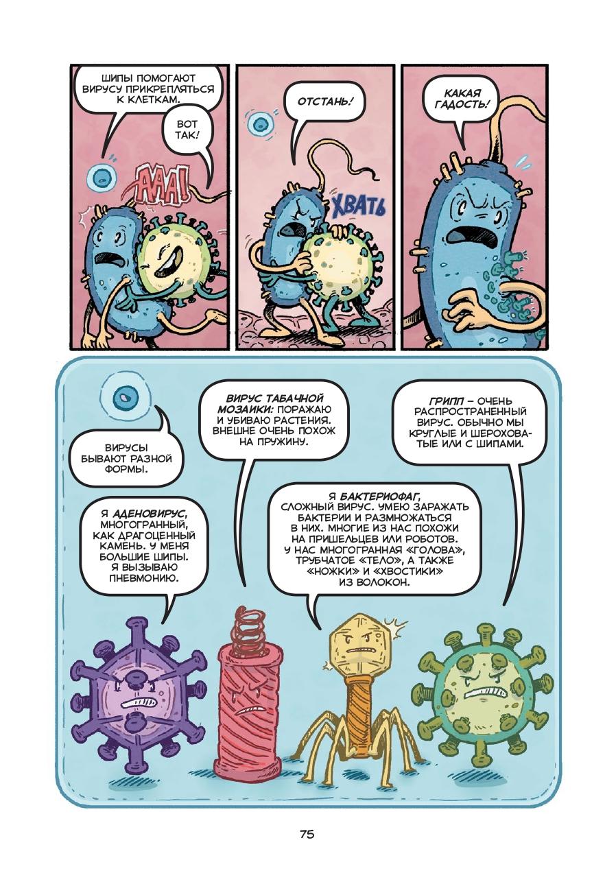 «Вирусы бывают разные»: отрывок изнаучного комикса «Микробы и вирусы» 1